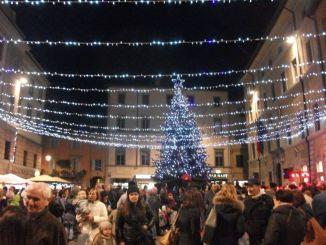 Natale a Umbertide, acceso l'albero di Natale in piazza Matteotti