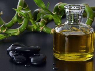 Olio extravergine di oliva mercato della terra degustazioni