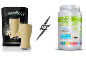 vega one delivers a powerful protein