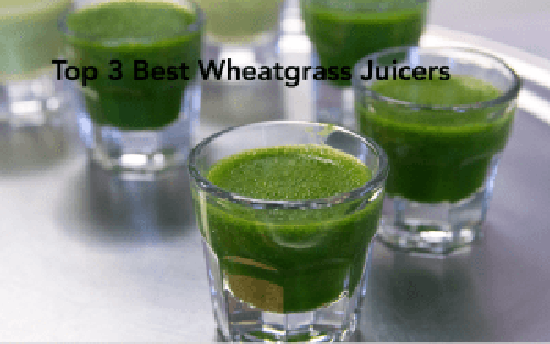 When You Love Your Wheatgrass The Top 3 Best Wheatgrass Juicers