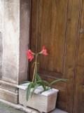 Teggiano - Chiesa di San Martino