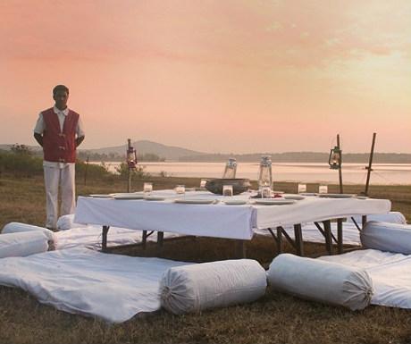 Bison Resort