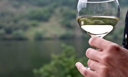 Fazenda Prádio, ven, conoce y apasiónate con el mundo del vino en Ribeira Sacra.