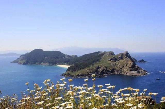 flora en islas cies