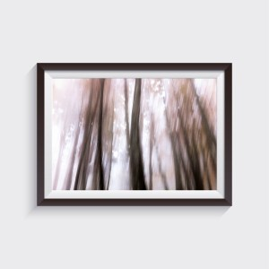 fine art wood photography iphone landscape print shop