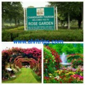 रोज गार्डन चंडीगढ के सुंदर दृश्य