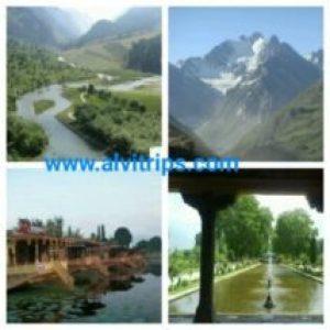 श्रीनगर हनीमून डेस्टिनेशन के कुछ सुंदर दृश्य