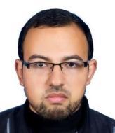 محمد مصطفى شاهين