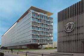 الجمعية العامة لمنظمة الصحة العالمية تصوت على قرار لصالح فلسطين