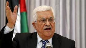 عريقات : أبومازن يشكل لجنة عليا لدراسة ملف غزة وإزالة أسباب الانقسام