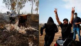 الإسرائيليون يفرحون لقتل فلسطيني على كرسي متحرك.. ويتأسفون على حرق شجرة