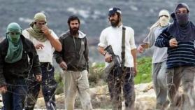 إصابات في هجوم للمستوطنين بالخليل