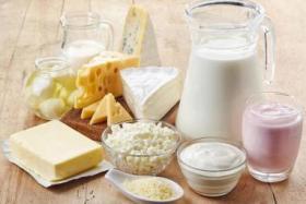 منتجات الألبان كاملة الدسم تفيد صحتك أم تضرها؟