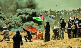 أبوظريفة: مسيرات اليوم بغزة ستشهد تصعيدا بالفعاليات