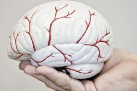 """دراسة تربط بين النوم المفرط في النهار والإصابة بـ """"ألزهايمر"""""""
