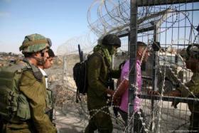 الاحتلال يعتقل 5 شبان على حدود قطاع غزة