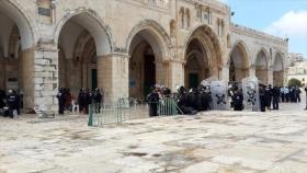 الاحتلال يعتقل سبعة مقدسيين ويبعد آخراً لمدة ثلاثة أشهر