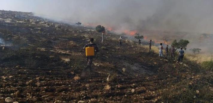 9 1221 - 302 حريق في الضفة خلال الـ24 ساعة الماضية أتت على مئات الدونمات والأشجار (صور)