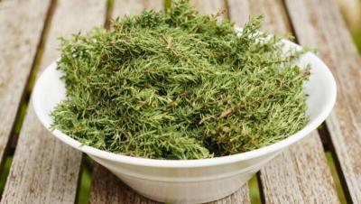 8 أعشاب طبيعية لعلاج مرضى الربو