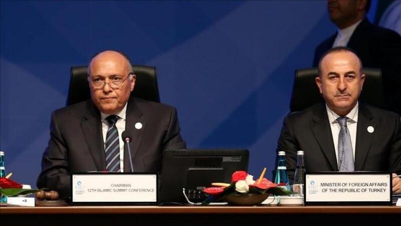 أول اتصال هاتفي بين وزيري خارجية مصر وتركيا