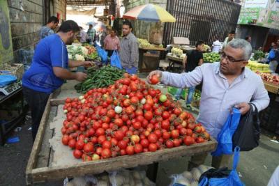 أسعار الخضار وسعر الدجاج في قطاع غزة اليوم
