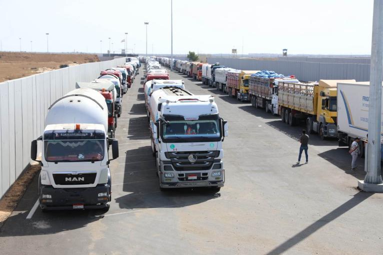 وزارة التنمية توضح الفئات المستهدفة من المساعدات المصرية (مرفق كشف أسماء)