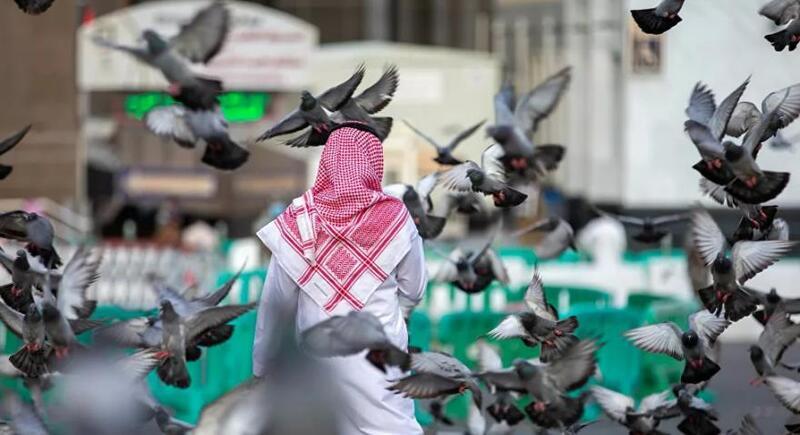 السعودية تعلن العودة لاستقبال السياح من مختلف دول العالم