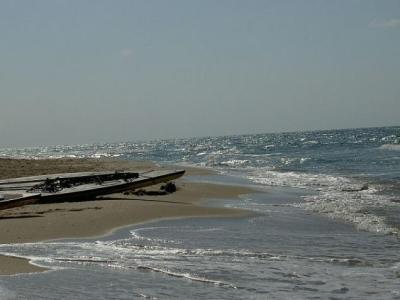 غزة.. أول مسابقة للتجذيف بمشاركة فلسطينيات على شاطئ البحر