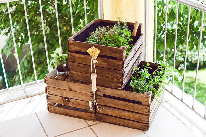 krautergarten-balkon-weinkisten-diy-always-like-a-feather-06