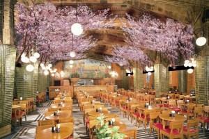 ビヤホールライオン銀座七丁目店「お花見ビヤホール」
