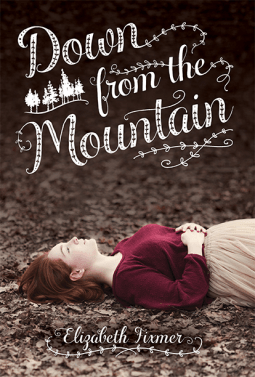Review:: Down from the Mountain by Elizabeth Fixmer