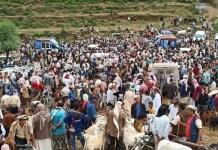 أضاحي العيد في اليمن
