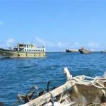 المصائد السمكية تدين احتجاز بوارج العدوان لخمسة قوارب على متنها 12 صياد من منطقة بحيص بحجة