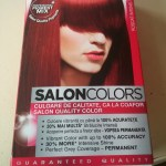 Review vopsea de par Palette Salon Colors