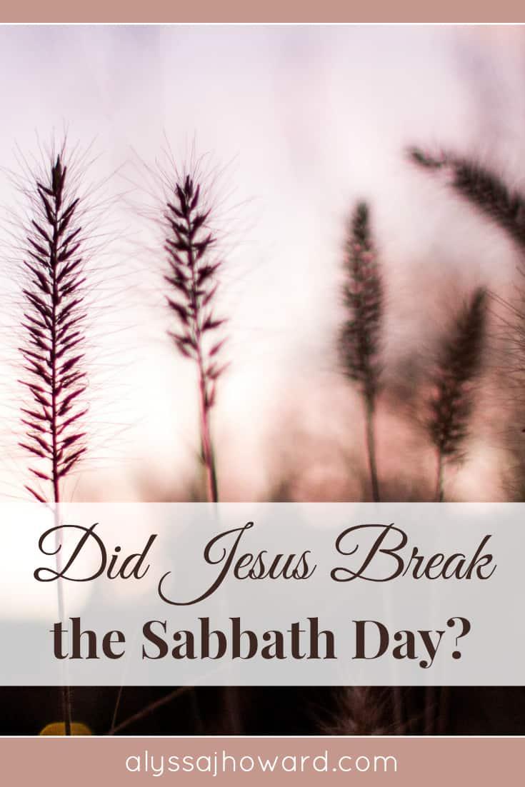 Did Jesus Break the Sabbath Day?   alyssajhoward.com