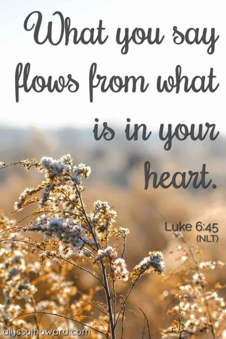 What you say flows from what is in your heart. - Luke 6:45
