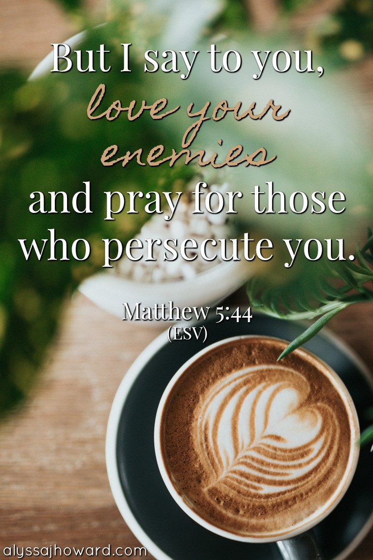 But I say to you, love your enemies and pray for those who persecute you. - Matthew 5:44
