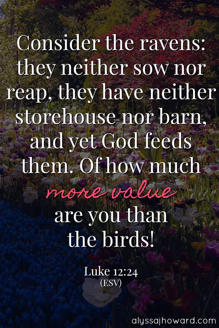 Consider the ravens: they neither sow nor reap, they have neither storehouse nor barn, and yet God feeds them. Of how much more value are you than the birds! - Luke 12:24