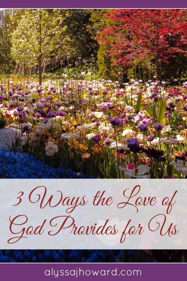 3 Ways the Love of God Provides for Us | alyssajhoward.com