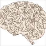 Sexo: aumenta la memoria, mejora la próstata, reduce riesgo de cáncer y quita migrañas ?