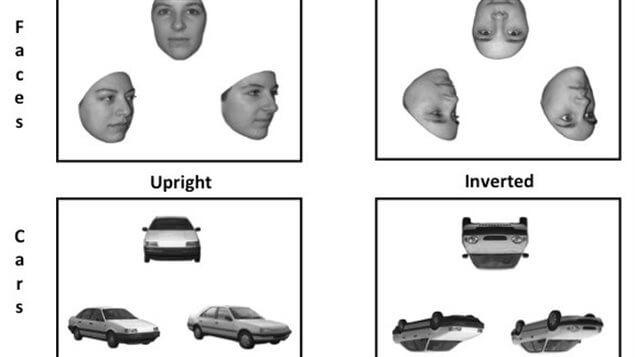 """Nuevo estudio de """"reconocimiento de rostros"""""""