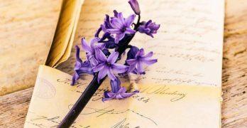 Carta A Mi Madre por Eliana Perez Galleguillos