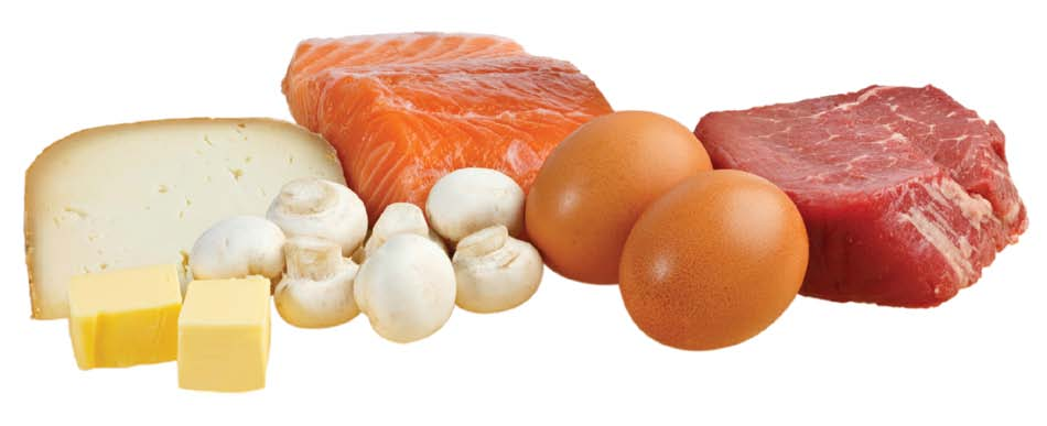 cheese, mushrooms, meat, fish, eggs