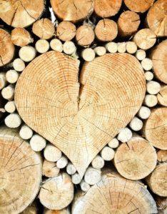 logging business