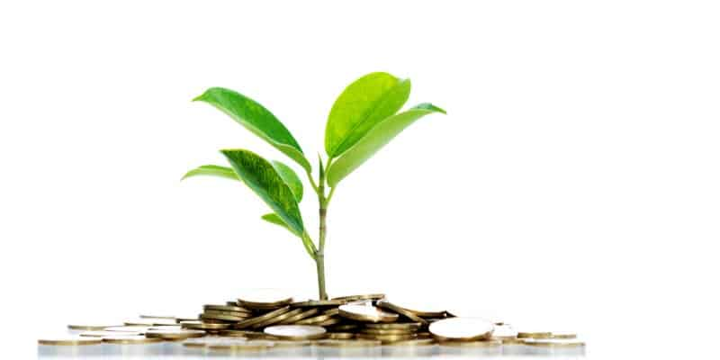 how we invest, symbolized by a plant sprouting through pile of coins