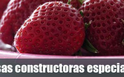 Si contratas una empresa constructora especializada, al-loro con esto