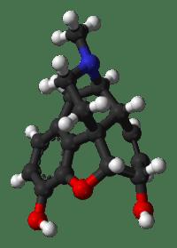 endorfina morfin oppioidi endogeno