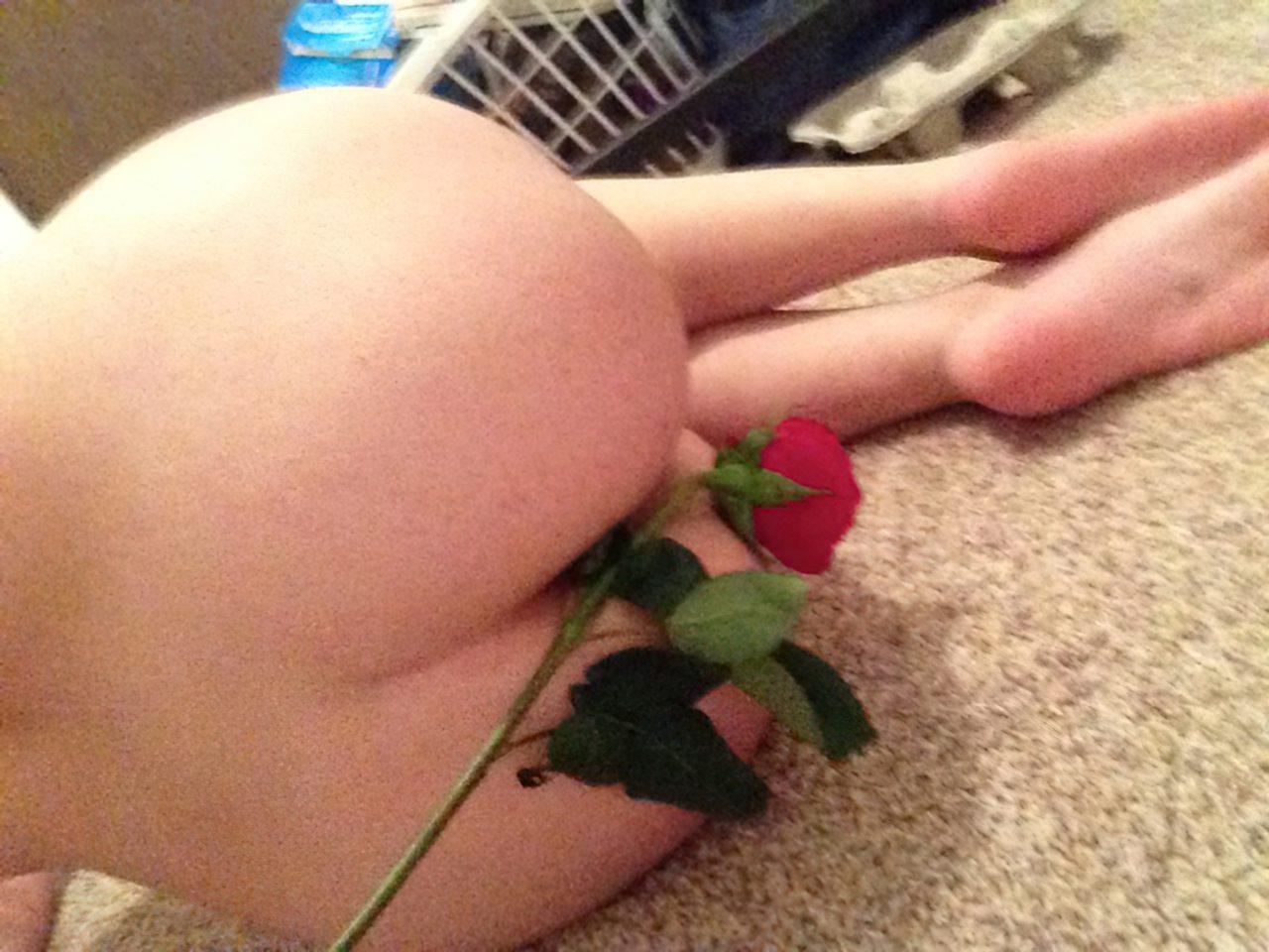 Rosa Vermelha (10)