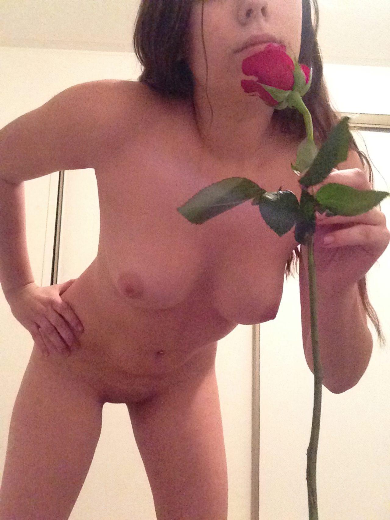Rosa Vermelha (17)