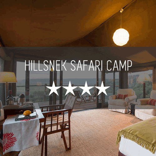 Hillsnek Safari Camp Amakhala Featured Image